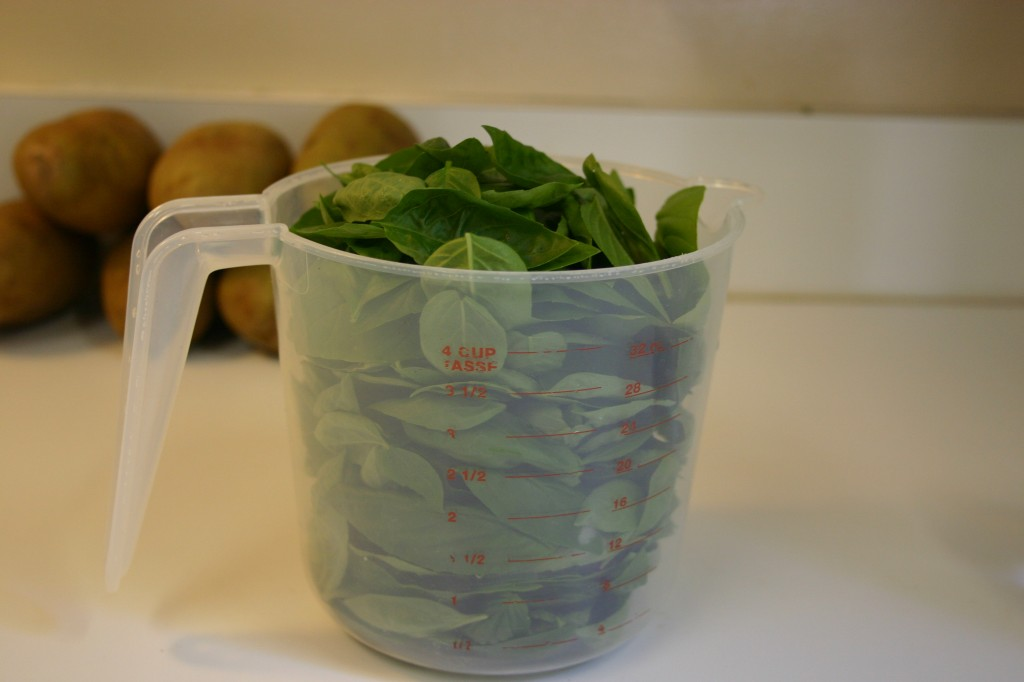 basil in measuring cup