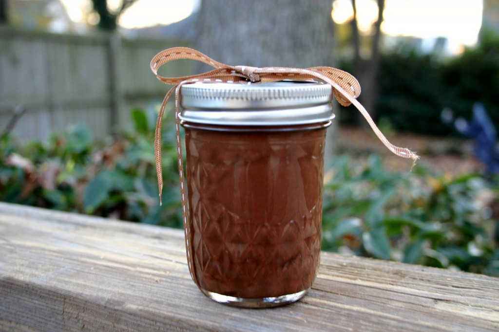 homemade chocolate peanut butter