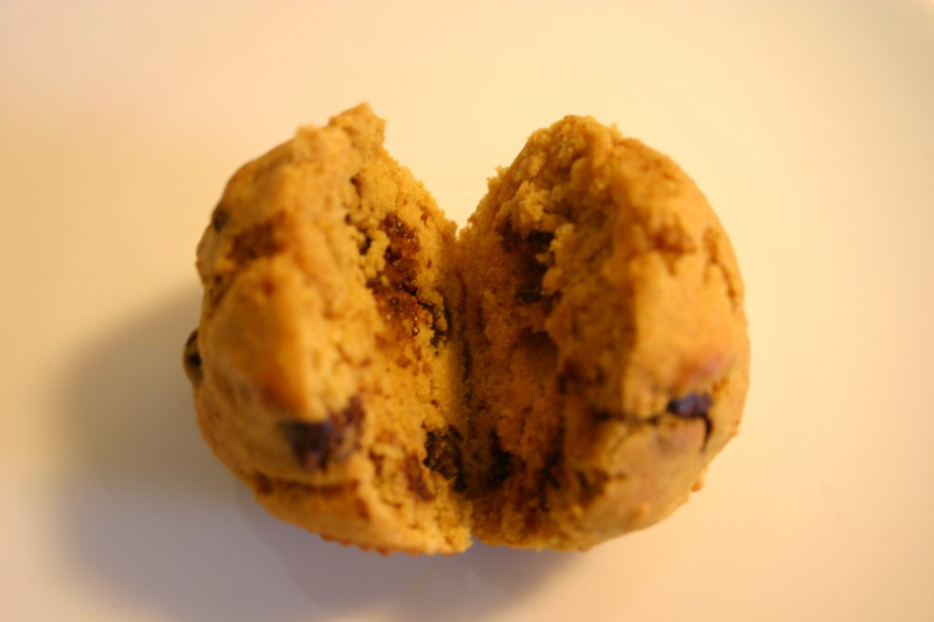 pumpkin chocolate cihp muffin