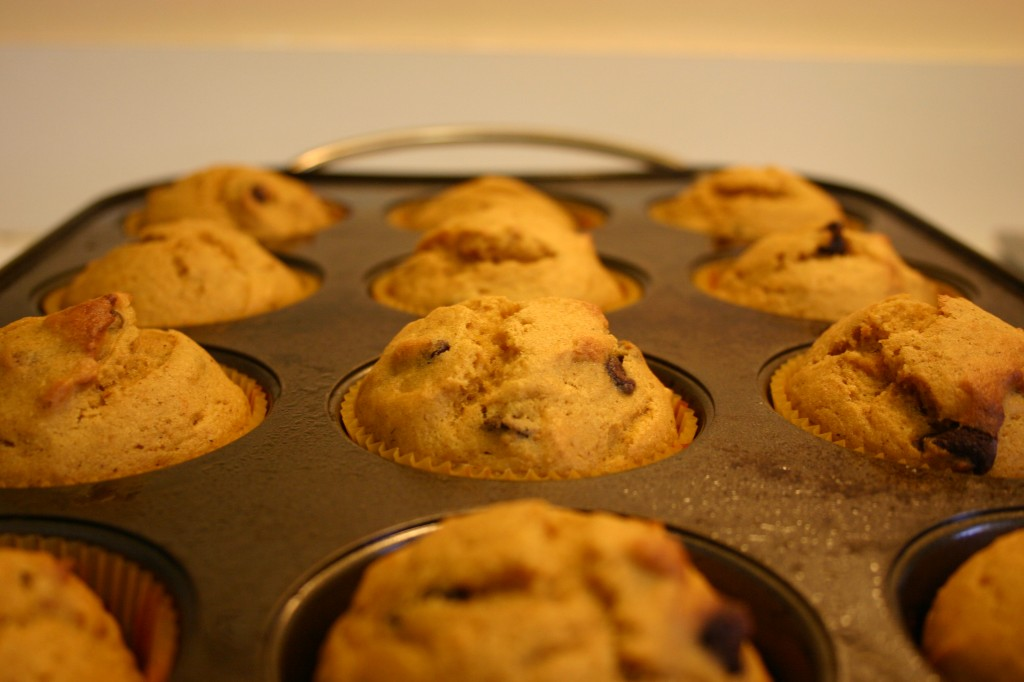 pumpkin chocolate chip muffins cooked